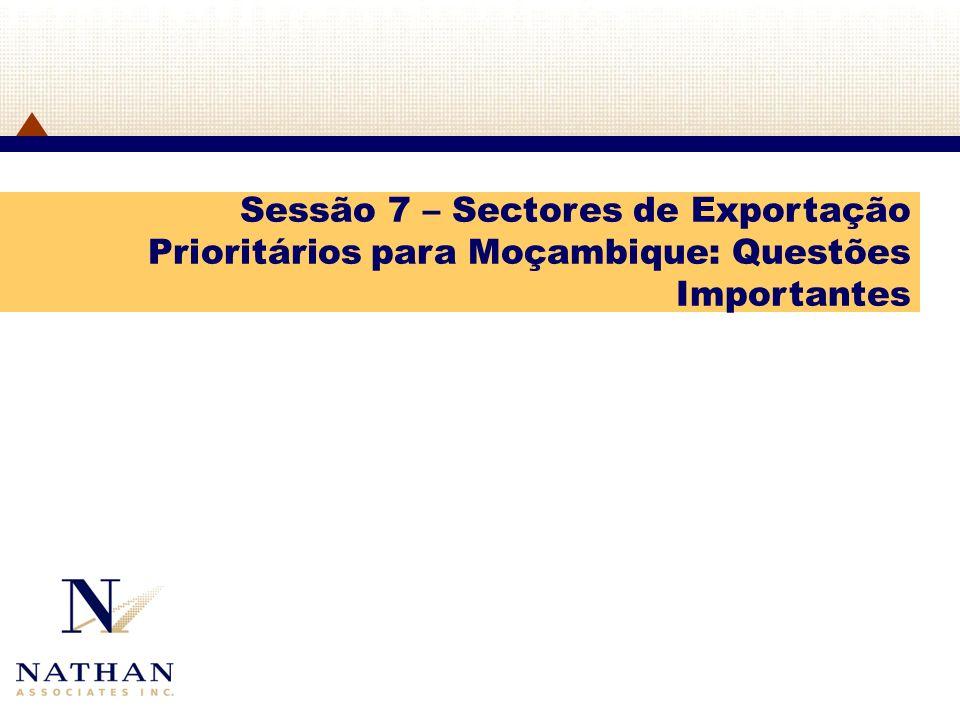Sessão 7 – Sectores de Exportação Prioritários para Moçambique: Questões Importantes