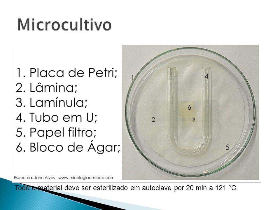 Microcultivo Todo o material deve ser esterilizado em autoclave por 20 min a 121 °C.