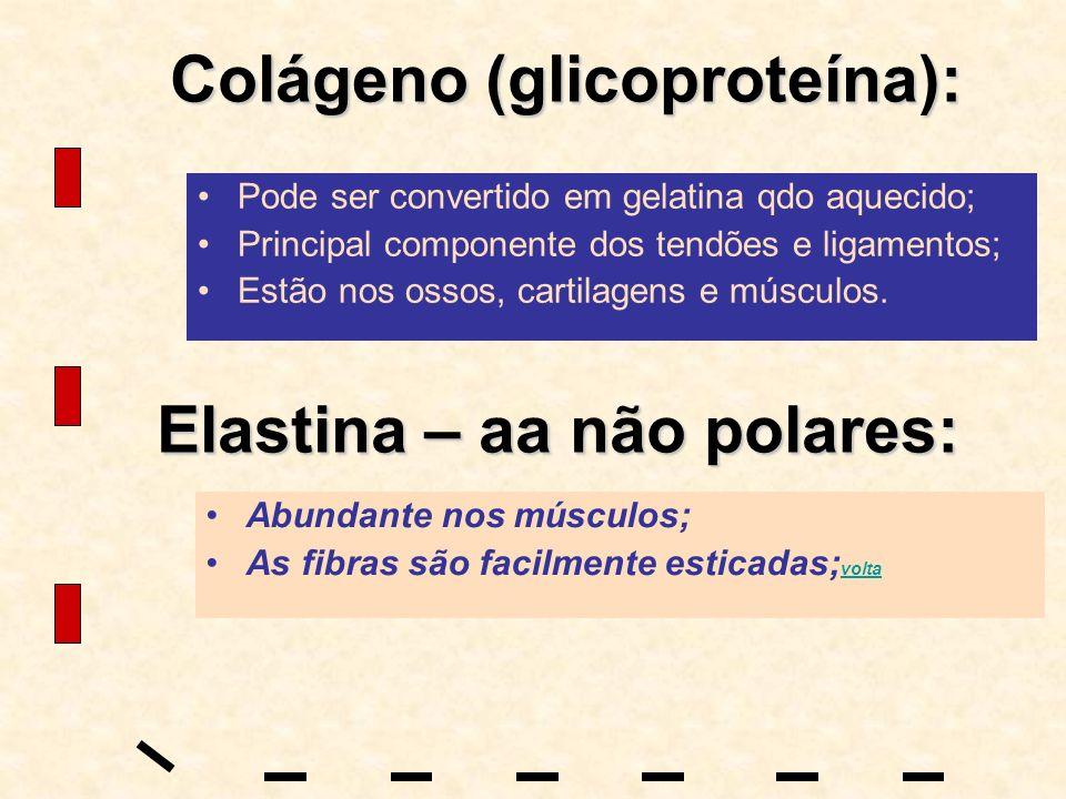 Colágeno (glicoproteína):