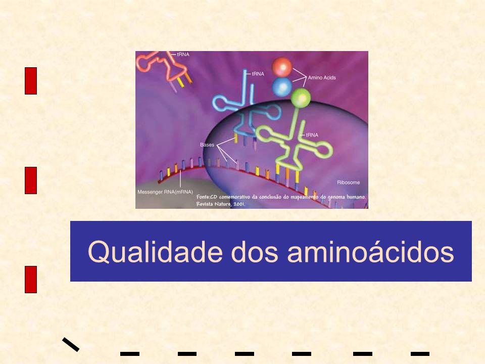 Qualidade dos aminoácidos