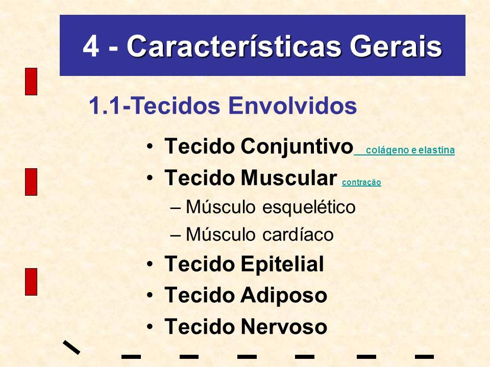 4 - Características Gerais