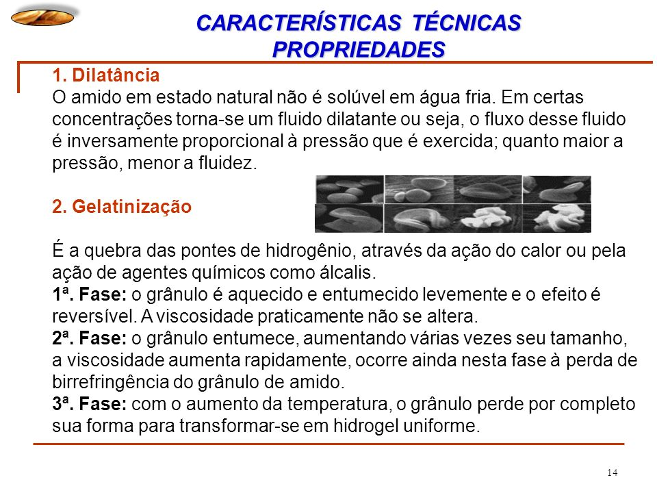 CARACTERÍSTICAS TÉCNICAS