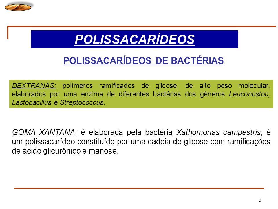 POLISSACARÍDEOS DE BACTÉRIAS