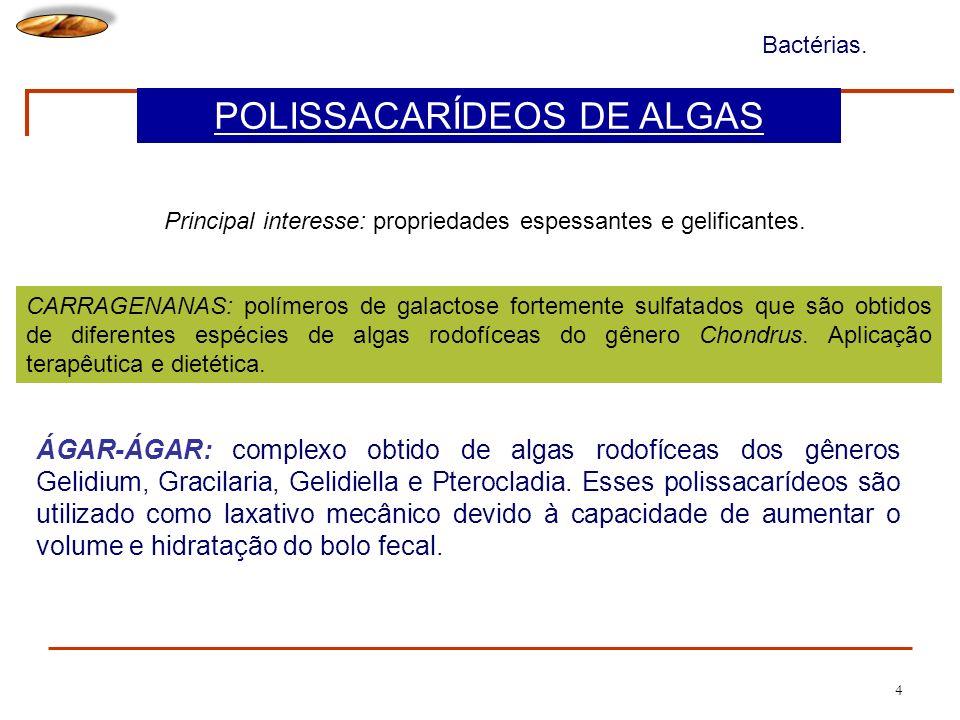 POLISSACARÍDEOS DE ALGAS