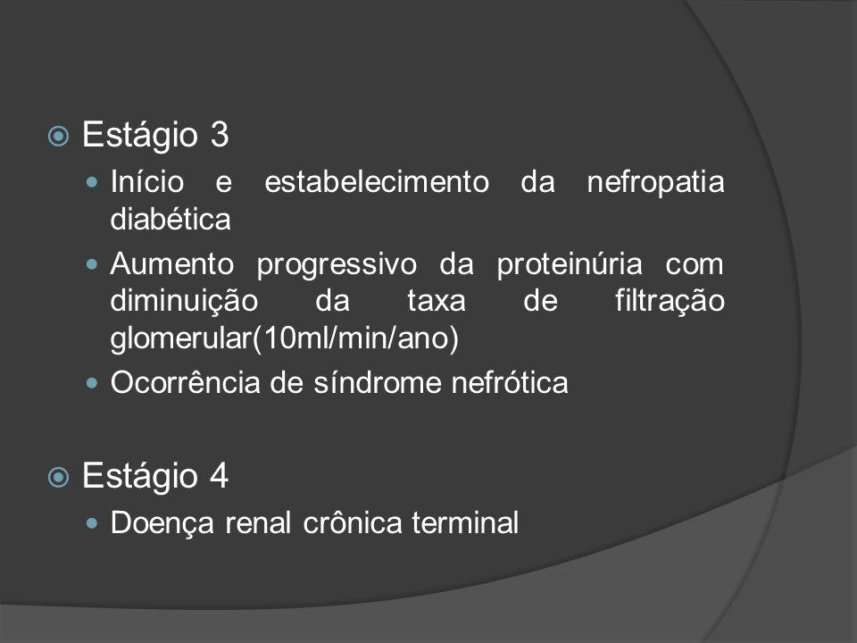 Estágio 3 Estágio 4 Início e estabelecimento da nefropatia diabética