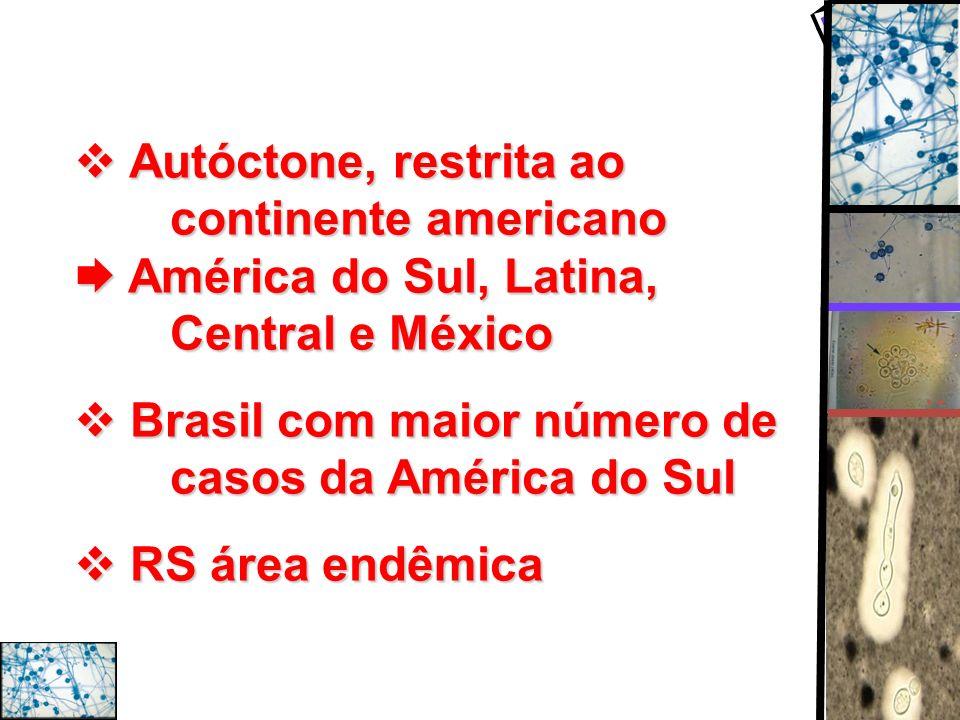 Autóctone, restrita ao. continente americano  América do Sul, Latina,