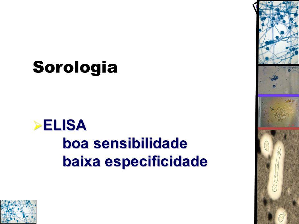 Sorologia ELISA boa sensibilidade baixa especificidade