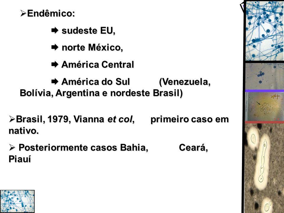 Endêmico:  sudeste EU,  norte México,  América Central.  América do Sul (Venezuela, Bolívia, Argentina e nordeste Brasil)