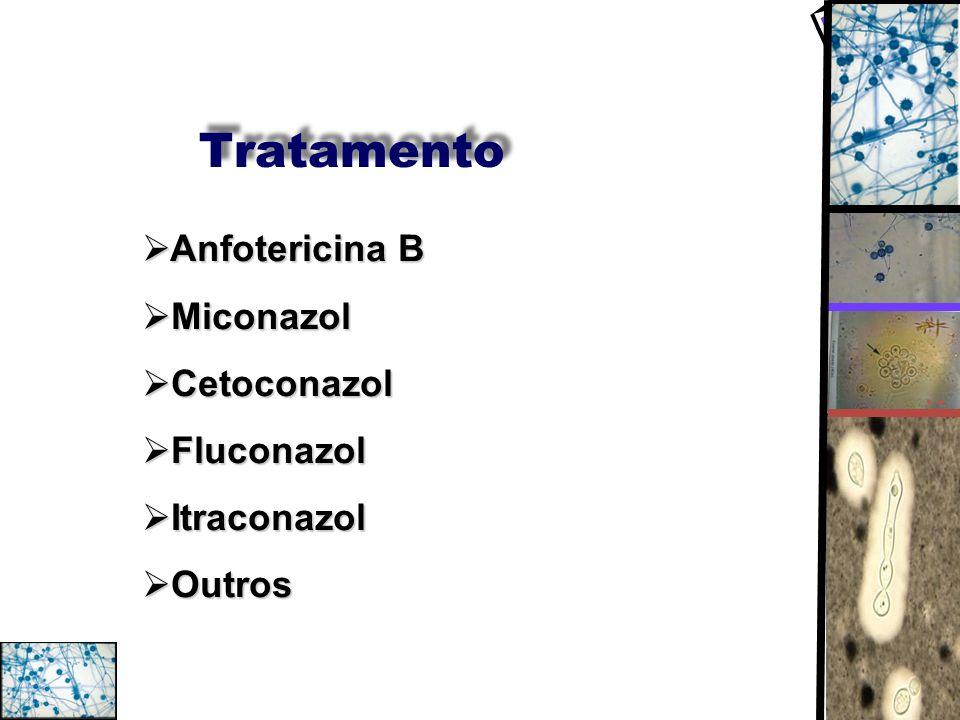 Tratamento Anfotericina B Miconazol Cetoconazol Fluconazol Itraconazol