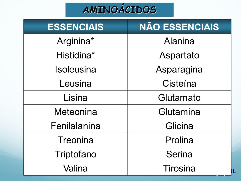 AMINOÁCIDOS ESSENCIAIS. NÃO ESSENCIAIS. Arginina* Alanina. Histidina* Aspartato. Isoleusina. Asparagina.