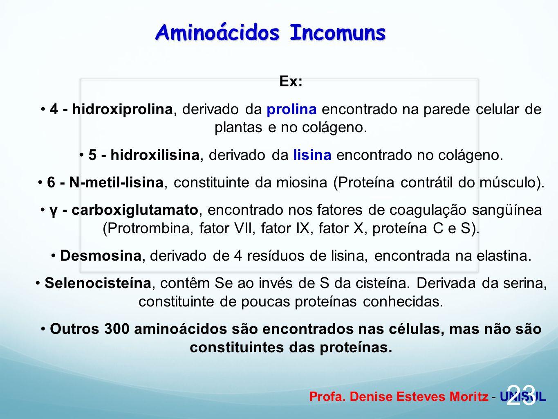 Aminoácidos Incomuns Ex: