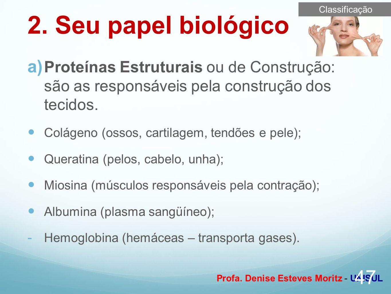Classificação 2. Seu papel biológico. Proteínas Estruturais ou de Construção: são as responsáveis pela construção dos tecidos.