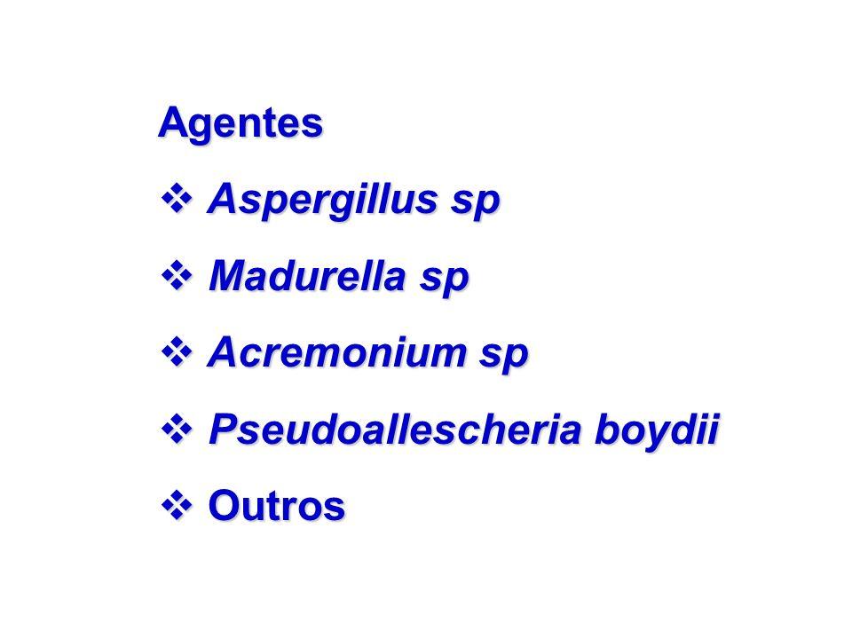 Agentes Aspergillus sp Madurella sp Acremonium sp Pseudoallescheria boydii Outros