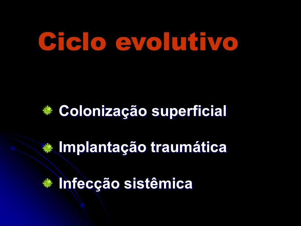 Ciclo evolutivo Colonização superficial Implantação traumática