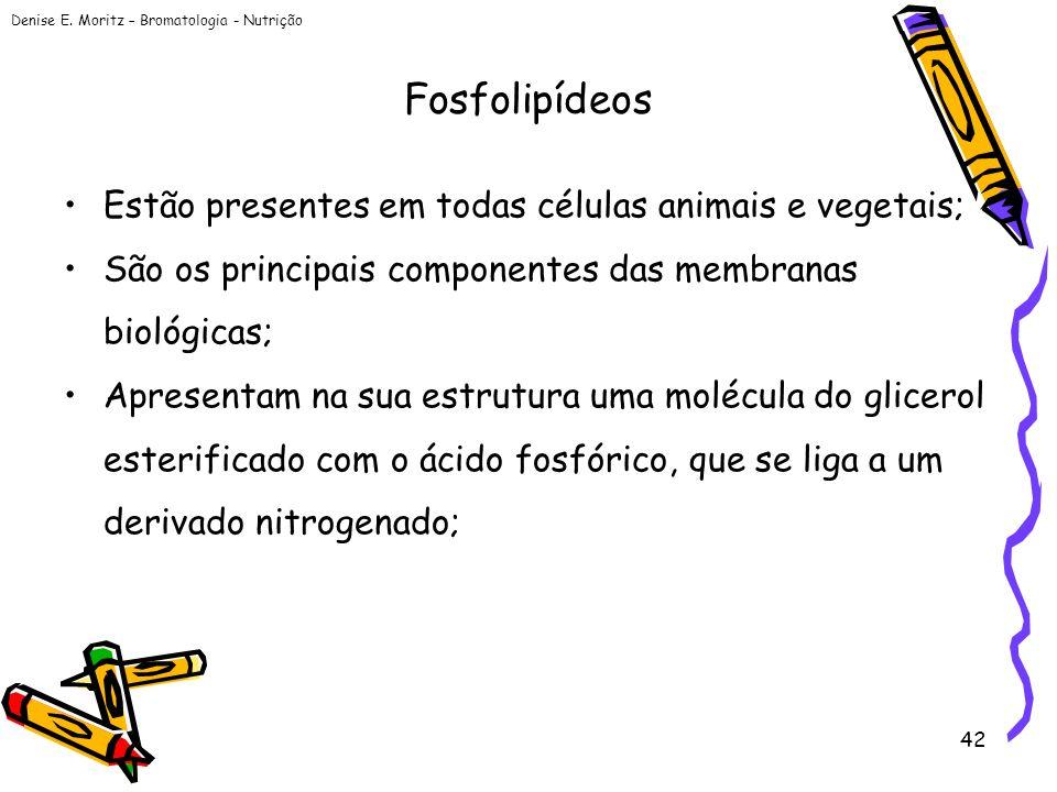 Fosfolipídeos Estão presentes em todas células animais e vegetais;