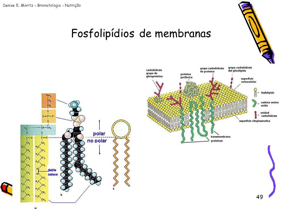 Fosfolipídios de membranas