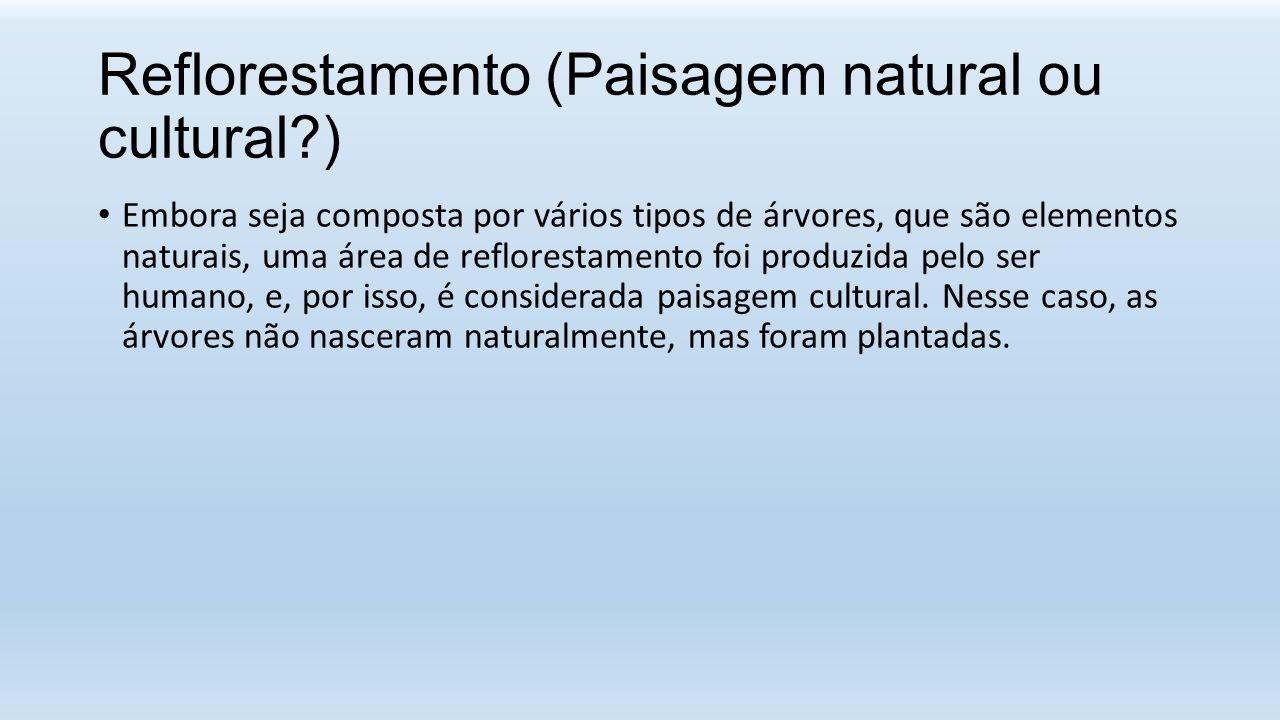 Reflorestamento (Paisagem natural ou cultural )
