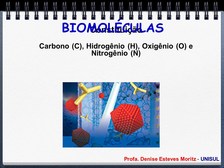 Carbono (C), Hidrogênio (H), Oxigênio (O) e