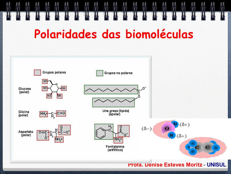 Polaridades das biomoléculas
