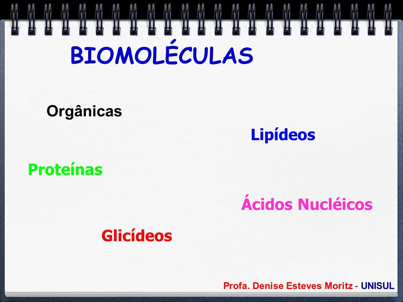 BIOMOLÉCULAS Orgânicas Lipídeos Proteínas Ácidos Nucléicos Glicídeos