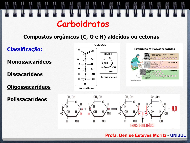 Compostos orgânicos (C, O e H) aldeídos ou cetonas