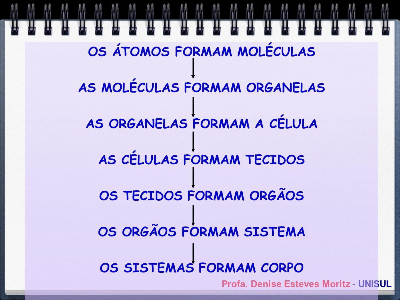 OS ÁTOMOS FORMAM MOLÉCULAS AS MOLÉCULAS FORMAM ORGANELAS