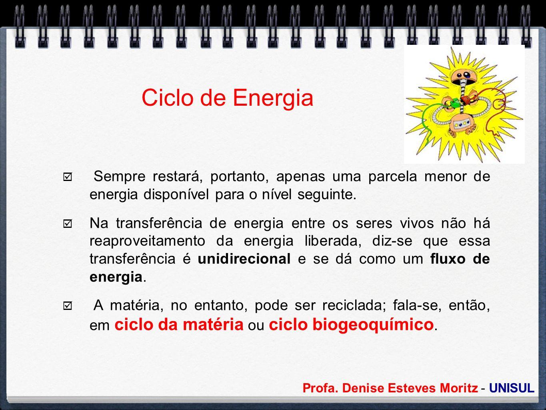 Ciclo de Energia Sempre restará, portanto, apenas uma parcela menor de energia disponível para o nível seguinte.