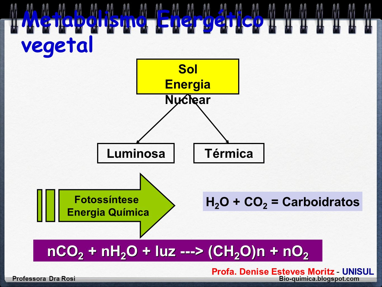 Metabolismo Energético vegetal