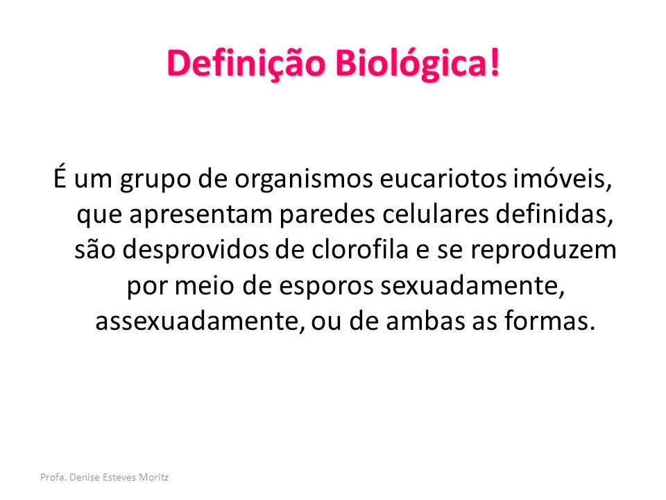 Definição Biológica!