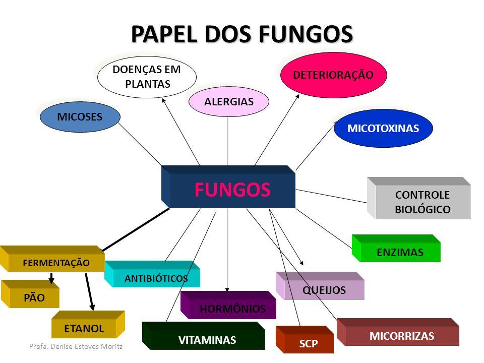 PAPEL DOS FUNGOS FUNGOS DOENÇAS EM DETERIORAÇÃO PLANTAS ALERGIAS