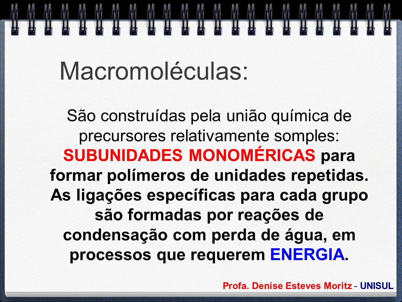 Macromoléculas: