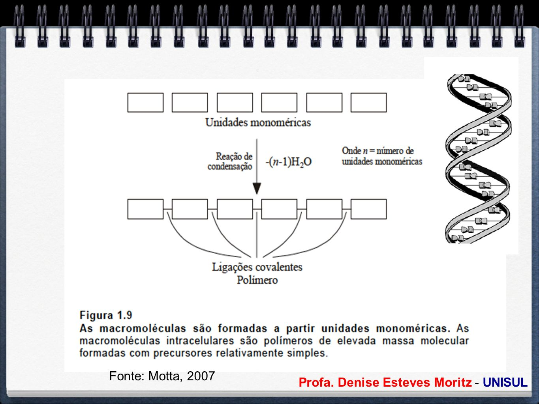 Fonte: Motta, 2007