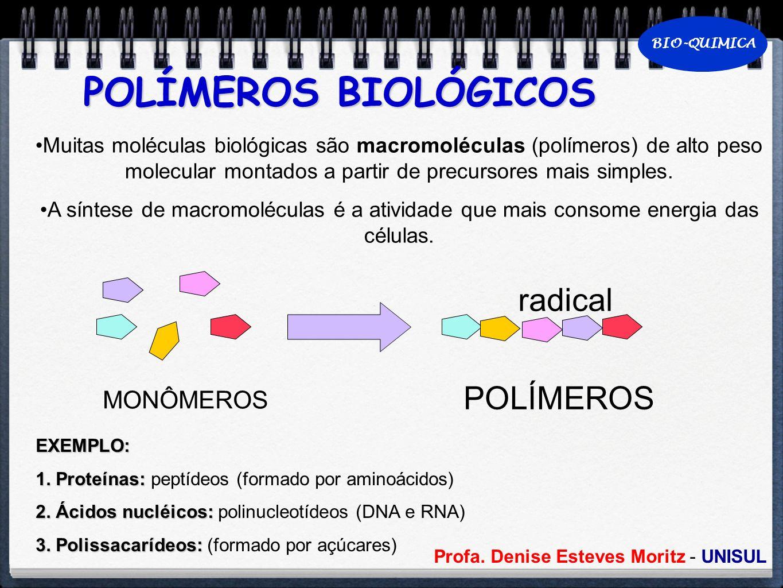 POLÍMEROS BIOLÓGICOS radical POLÍMEROS MONÔMEROS