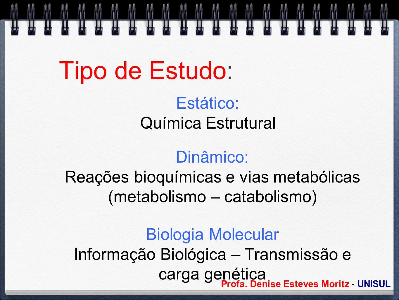 Tipo de Estudo: Estático: Química Estrutural Dinâmico: