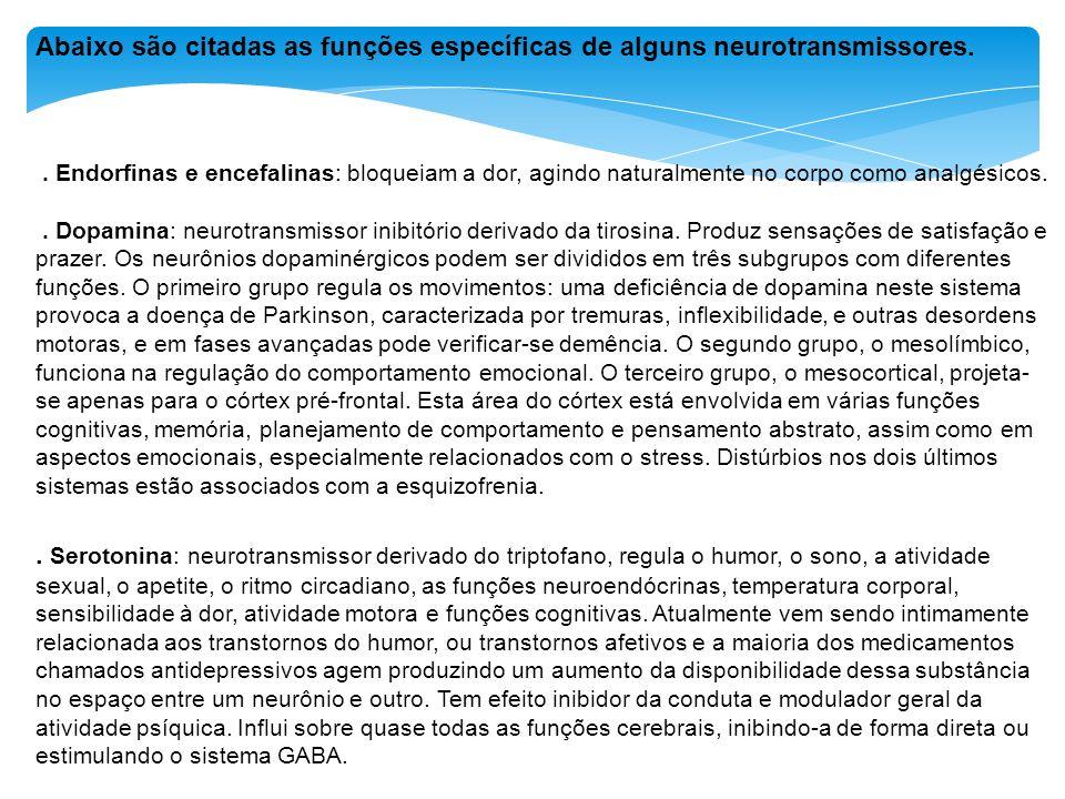 Abaixo são citadas as funções específicas de alguns neurotransmissores.