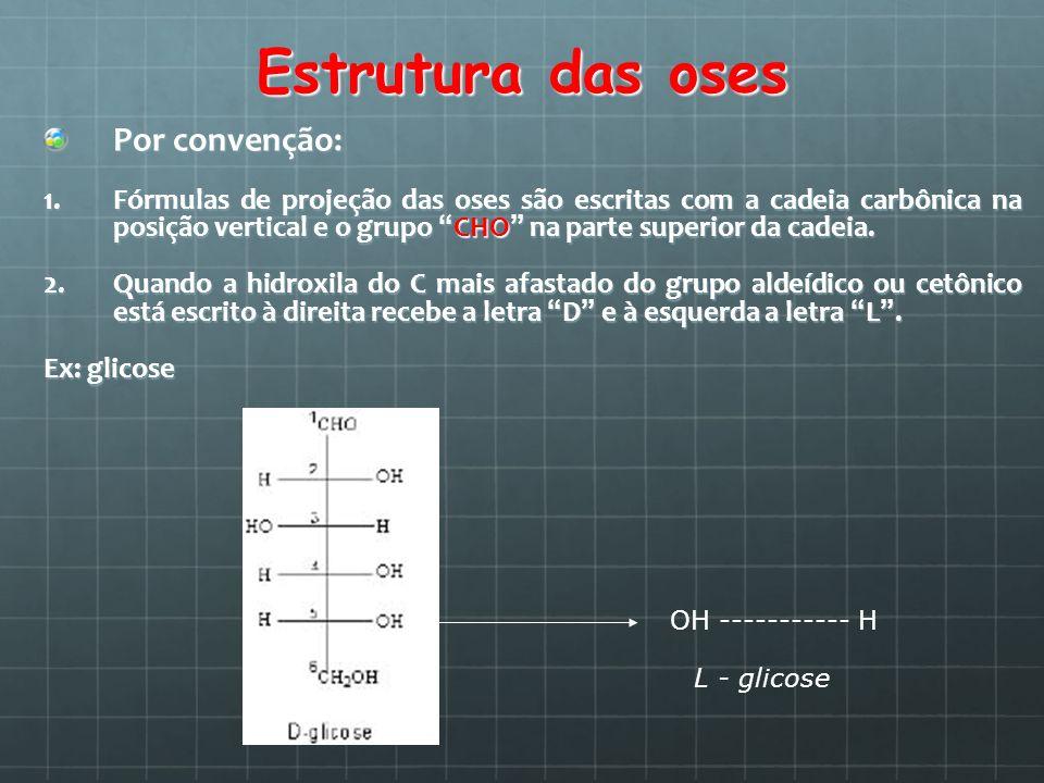 Estrutura das oses Por convenção: