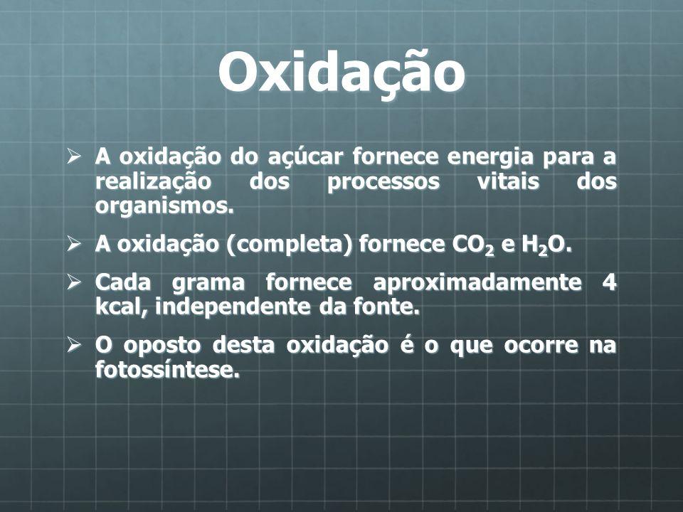 Oxidação A oxidação do açúcar fornece energia para a realização dos processos vitais dos organismos.