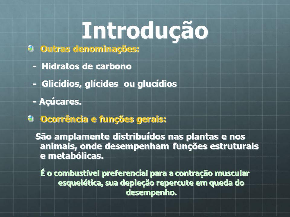 Introdução Outras denominações: - Hidratos de carbono