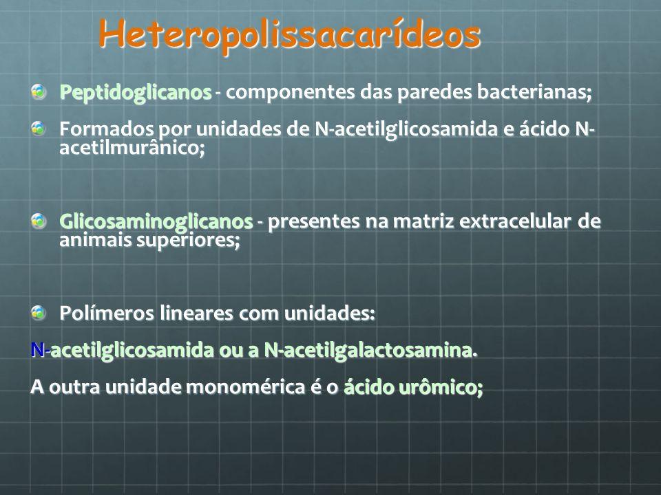 Heteropolissacarídeos