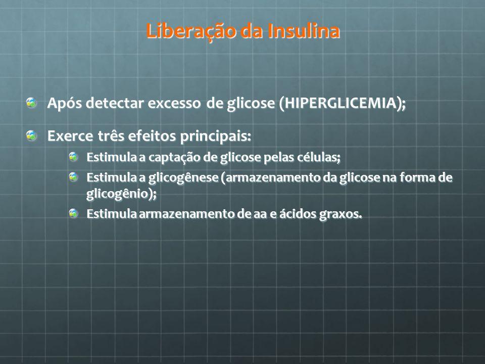 Liberação da Insulina Após detectar excesso de glicose (HIPERGLICEMIA); Exerce três efeitos principais: