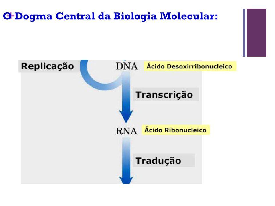 O Dogma Central da Biologia Molecular: