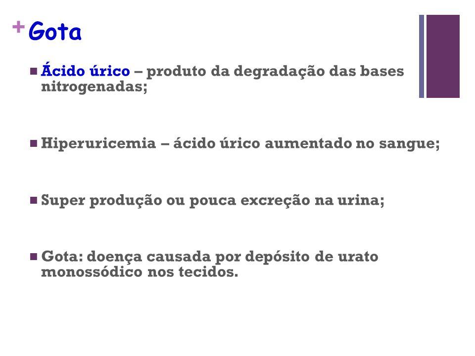 Gota Ácido úrico – produto da degradação das bases nitrogenadas;