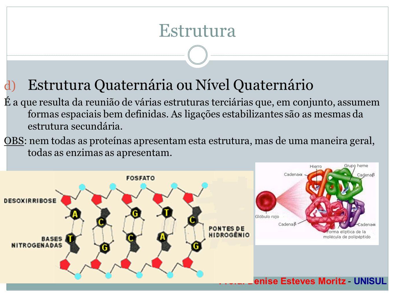 Estrutura Estrutura Quaternária ou Nível Quaternário