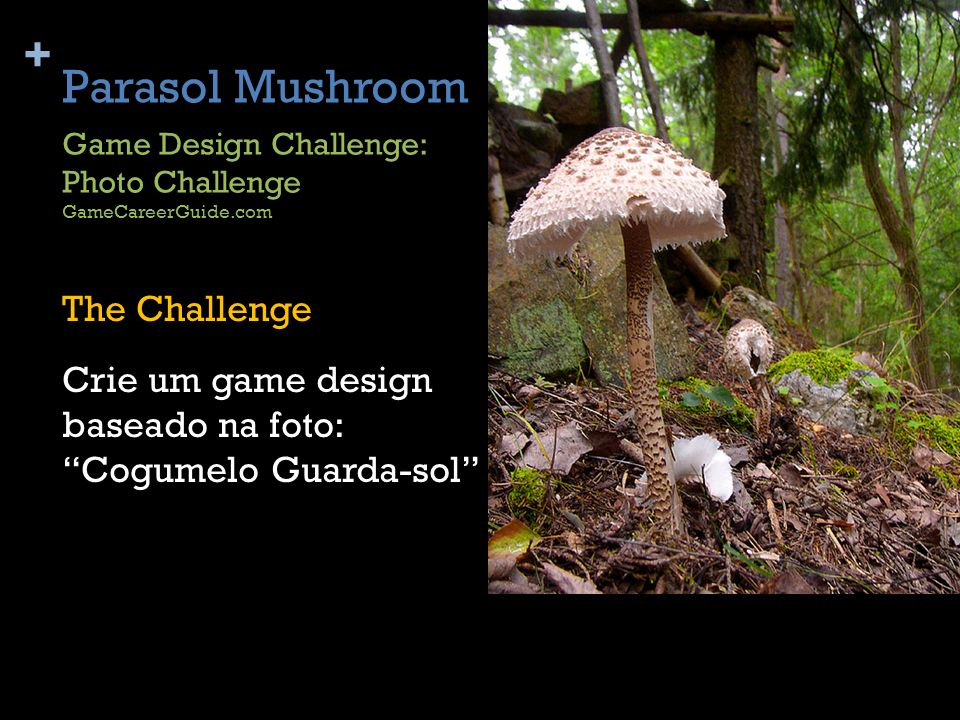 Parasol Mushroom Game Design Challenge: Photo Challenge. GameCareerGuide.com.