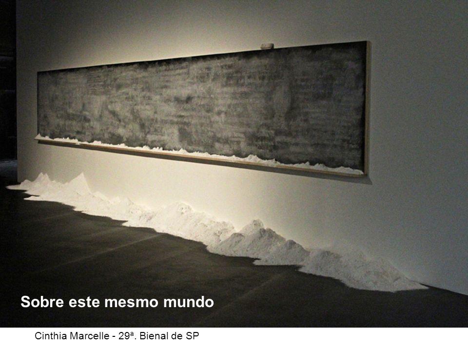 Cinthia Marcelle - 29ª. Bienal de SP
