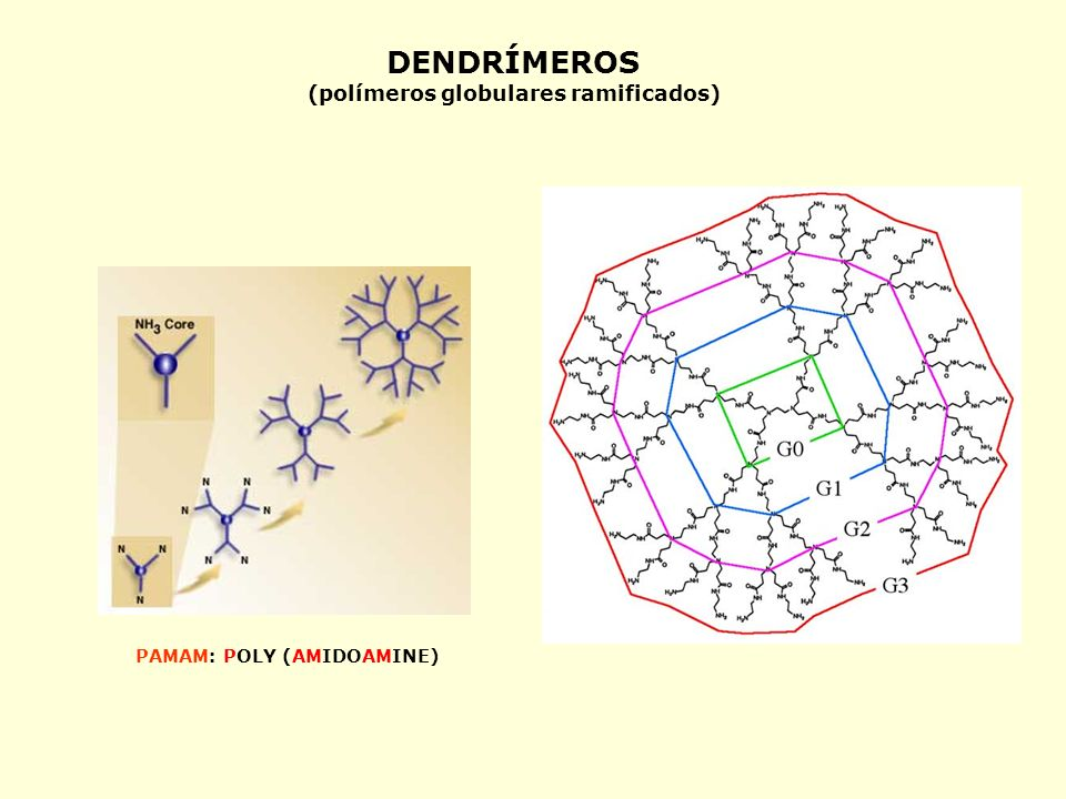 (polímeros globulares ramificados)