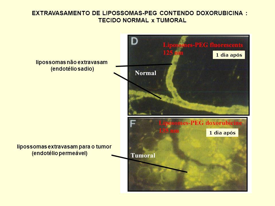 EXTRAVASAMENTO DE LIPOSSOMAS-PEG CONTENDO DOXORUBICINA :