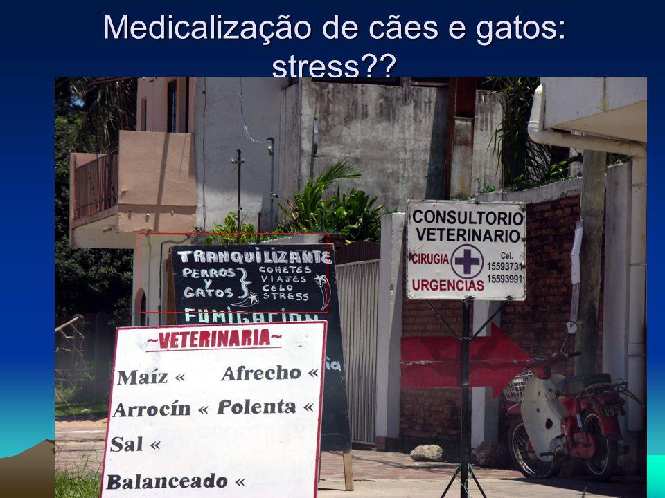 Medicalização de cães e gatos: stress
