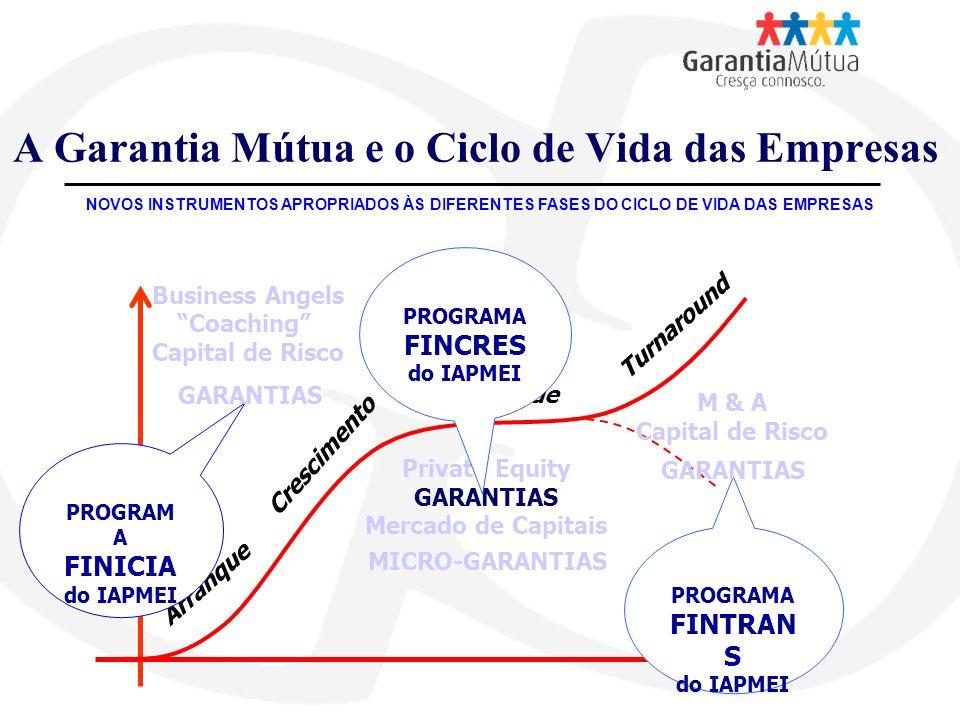 A Garantia Mútua e o Ciclo de Vida das Empresas