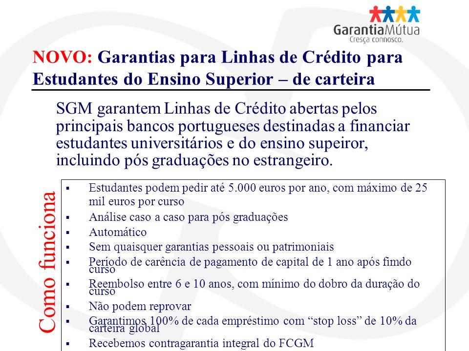 NOVO: Garantias para Linhas de Crédito para Estudantes do Ensino Superior – de carteira